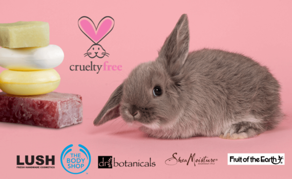 BRANDS IN THE WORLD WHO ARE CRUELTY-FREE